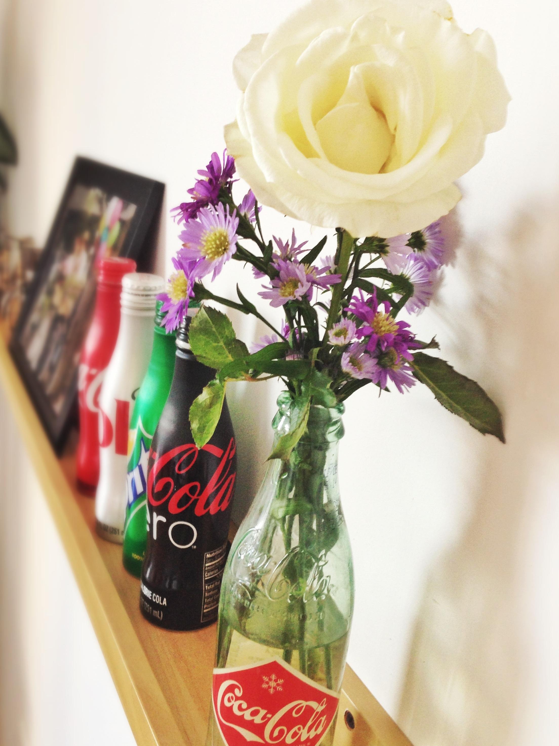 Flor en una botella de Coca Cola