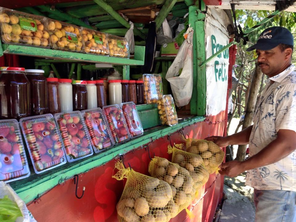 fresas y pasas de Constanza